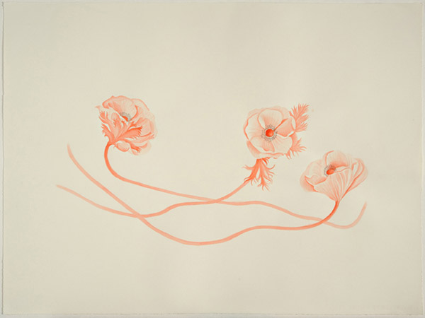 drawing1-valeriehammond