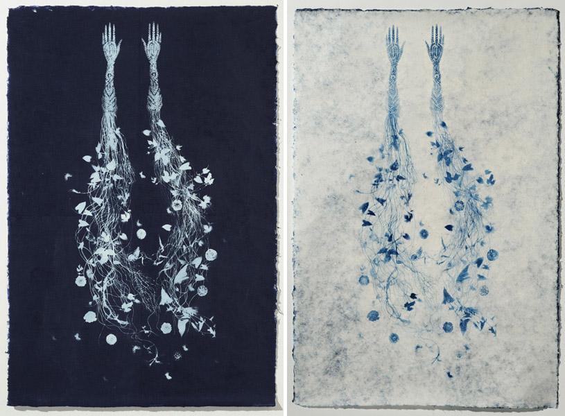 prints-valeriehammond