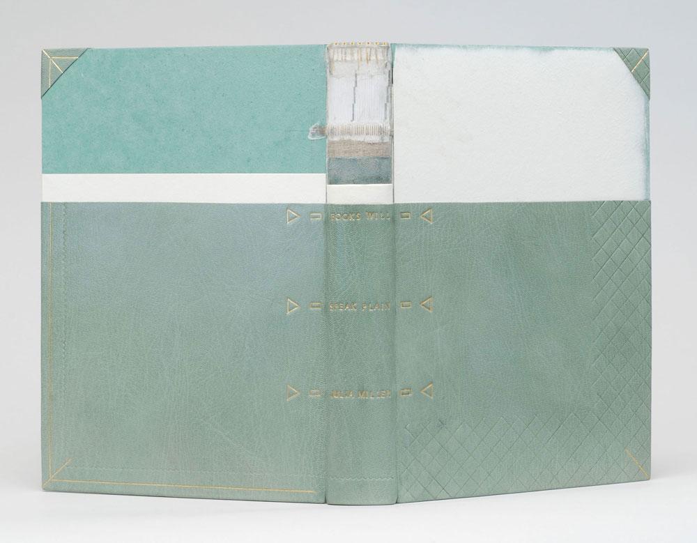 booksspeakplain1-karenhanmer