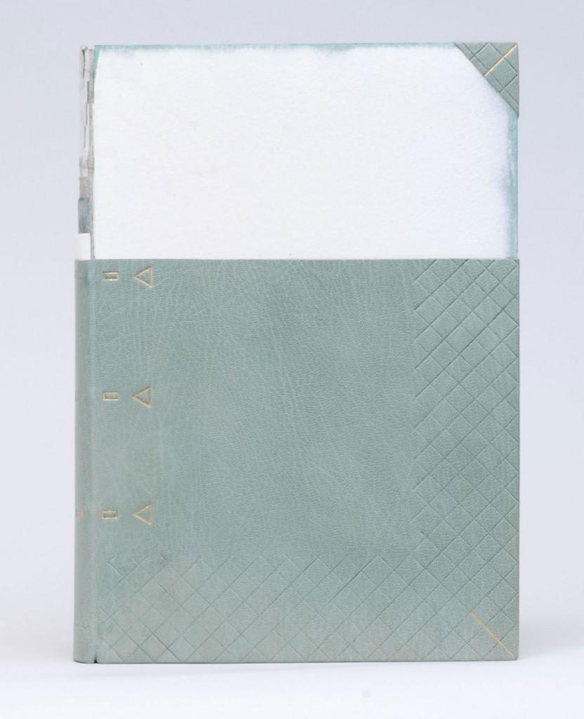 booksspeakplain2-karenhanmer