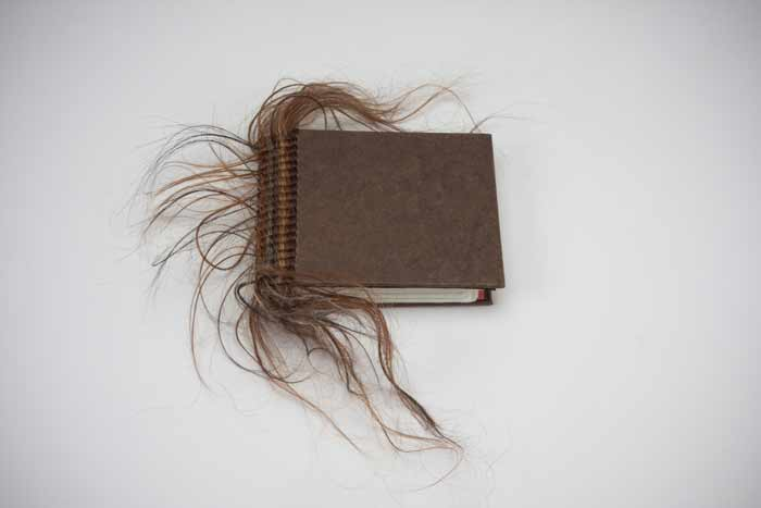 HairTalk2-DianeJacobs